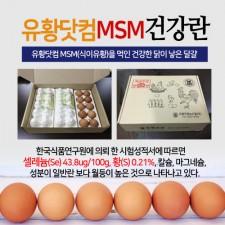 유황닷컴MSM건강란