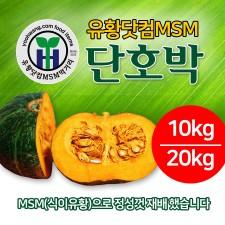 유황닷컴MSM 단호박 10kg/20kg