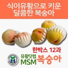 유황닷컴 MSM 복숭아 (1박스 12과)