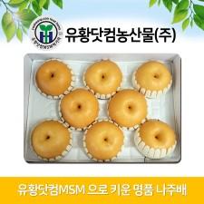 유황닷컴MSM 명품 나주배